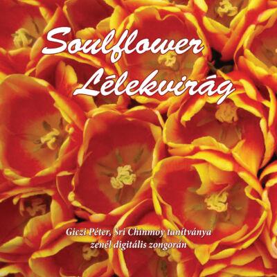 Soulflower (Lélekvirág) CD - Giczi Péter, Sri Chinmoy tanítványa zenél